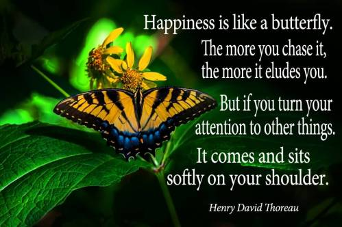 happiness-is-like-a-butterfly-24