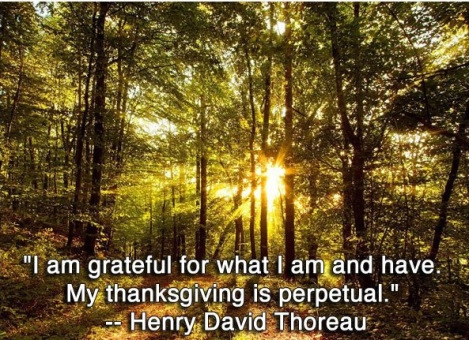 Thoreau Pondering Quotes A Heros Journey