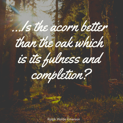 coacht.blog Emerson Quote Self-Reliance