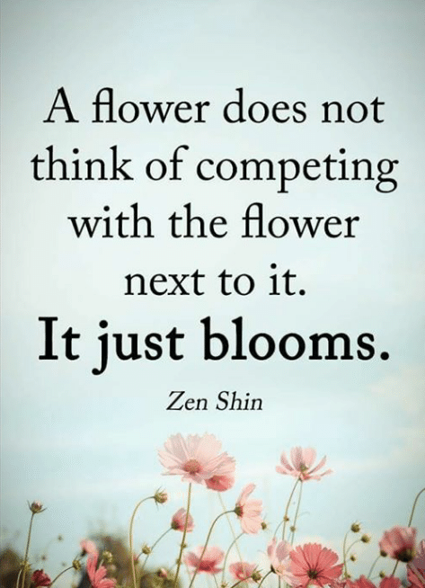 a-flower-does-not-think-of-competing-with-the-flower-6304583